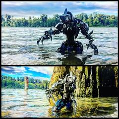 DC's King Shark (Tree Top Hippo) Tags: shark dc lego bionicle moc chima ccbs legomoc herofactory kingshark