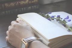 Sobre amar voc... (Morgnia A. Lima ) Tags: flores amor livro