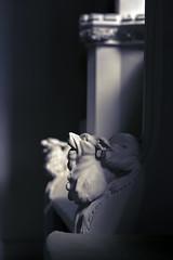 our lady & all saints otley 5 (ian.meekham) Tags: light shadow blackandwhite bw texture church monochrome wow dark mono blackwhite nikon bokeh yorkshire carving negativespace spirituality lightshadow soe tone lightandshadow nikon105mm churchinteriors yorkshirechurches nikond750