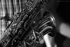Saxophone (Angelo Nori) Tags: blackandwhite music blackwhite blues saxophone biancoenero monocromatico angelonori