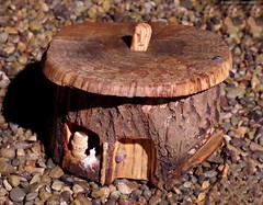 fairy house borrowers (Simon Dell Photography) Tags: diy home hand made wood carvings log tree green man face detail simon dell art sheffield 2016 fairy house idea novice new starter beginer how awsome xxx