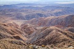 IMG_1353 Joshua Tree (Alex Hsieh ()) Tags: california travel usa canon nationalpark joshuatree roadtrip 6d joshuatreenationalpark 2016 canon6d