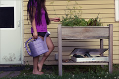 Water Your Dill (greySea Creations) Tags: dill weed raised garden bed girl watering can summer nights canon 6d 50mm light world