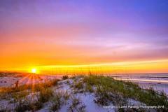 Sunrise: Emerald Isle NC. (T i s d a l e) Tags: beach dawn coast nc spring dunes may outerbanks easternnc tisdale 2016 boguebanks sunriseemeraldisle sunrisek