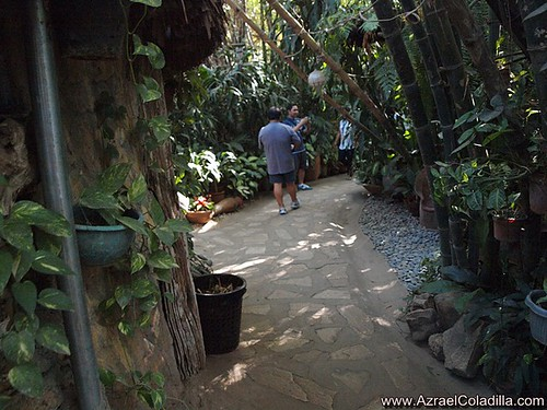 Hidden Garden in Vigan - photos by Azrael Coladilla