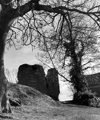 Loughor Castle (2) (Fragglehound) Tags: tree tower castle history monochrome ruins ruin loughor