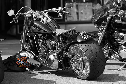 Harley Black and White with a hint of colour!