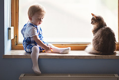 Musing (together) (Sharizah) Tags: life boy people baby cute window childhood cat germany bayern deutschland photography toddler infant europa europe fotografie child sweet fenste