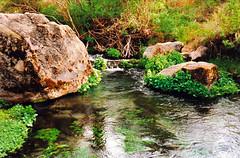 owens river (ron.bohlander) Tags: owensriver