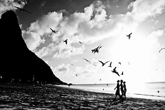 Catraias (Rodrigo Valença) Tags: summer brazil praia beach brasil island paradise ile playa atlantic verano tropical verão plage isla paraiso ilha brasile nordeste atlantico esmeralda noronha