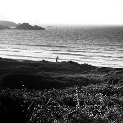 entre dunas (Explore 2013-09-25) (ines valor) Tags: playa dunas ferrol
