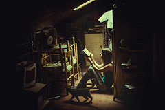 Where I used to dream (Alessio Albi) Tags: light portrait film cat nikon emotion dust conceptual ritratto cellar nook d600