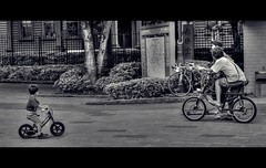 Like the Grownups (QuantumLogic (Slow)) Tags: people bicycle japan tokyo candid widescreen sony unposed cinematic hdr a57 1650