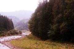 qnvBKcggIsc (little_wonderland) Tags: mountains macro love nature beauty canon awesome ukraine carpathians nofilter     canon450d
