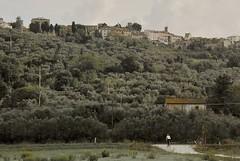 Cycling Tuscany / Castagneto Carducci (Arnaud Bachelard) Tags: road italy bike cycling italia tuscany ciclismo bici toscana toscane italie vlo carducci cyclisme bolgheri castagneto