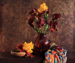 The Rebels Of Color (panga_ua) Tags: flowers stilllife color art floral colors co