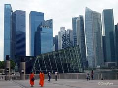 P1050063 (XimoPons : vistas 4.500.000 views) Tags: singapore asia singapur rascacielos republicofsingapore republiksingapura 新加坡共和国 mygearandme xīnjīapōgònghéguó ximopons சிங்கப்பூரகுடியரசு siṅkappūrkuṭiyarasu
