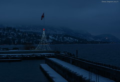 Harbour Lights (Photography Through Tania's Eyes) Tags: christmas trees lake snow canada water landscape photography lights photo dock nikon rocks photographer bc image britishcolumbia okanagan christmaslights photograph benches witner okanaganlake okanaganvalley peachland copyrightimage taniasimpson peachlandharbour