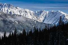 revelstoke landscape (Ruddmill) Tags: trees winter snow canada mountains rockies skiing britishcolumbia pines revelstoke cedars