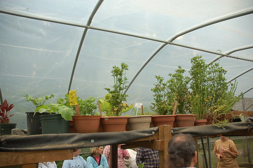 "Hoop House / Aquaponics System <a style=""margin-left:10px; font-size:0.8em;"" href=""http://www.flickr.com/photos/91915217@N00/12356345694/"" target=""_blank"">@flickr</a>"