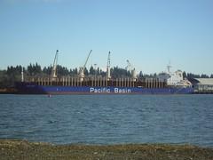 Jervis Bay (r.whitlock) Tags: port washington olympia shipping bulk logcarrier