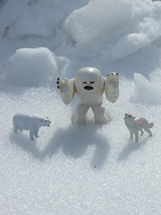 """Caroling"" (Monster In My Pocket) Tags: hairy white snow ice animal animals fur toy toys actionfigure starwars snowman furry palpatine snowy stormtroopers plastic princessleia actionfigures r2d2 snowmen figure stormtrooper snowing iced kenner lightsaber collectible collectables icy darthvader lukeskywalker yeti chewie figures sherpa himalayas lightsabers collectibles plasticanimals wookie chewbacca himalayan c3po collectable revengeofthesith abominable hansolo empirestrikesback returnofthejedi sherpas georgelucas snowed theemperor whitehair plasticfigure anakinskywalker wampas abominablesnowman thephantommenace wampa theempirestrikesback phantommenace attackoftheclones toyanimals yetis whitefur plasticanimal plasticfigures toyfigure toyanimal toyfigures abominablesnowmen plastictoyfigure plastictoyfigures"