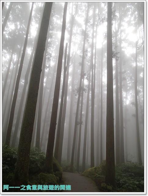 南投溪頭自然教育園區台大image099