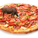 "Cow Pizza • <a style=""font-size:0.8em;"" href=""http://www.flickr.com/photos/120371802@N02/13687405455/"" target=""_blank"">View on Flickr</a>"