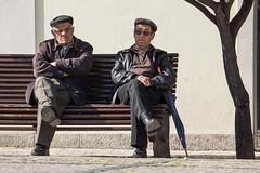 'Let Us Now Praise Famous Men' (Canadapt) Tags: tree men portugal umbrella bench solitude sitting lisbon walkerevans jamesagee loures canadapt