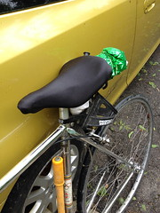 Another spash of color (ddsiple) Tags: green cycling recycling mylar visibility schwinnparamount