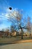 Kirkegården, skolen og bassen (voldsminde@rocketmail.com) Tags: norway nor trondheim tre sørtrøndelag lademoen trær basse parkering kirkegården voldsminde lillebyskole lademoenkirkegård