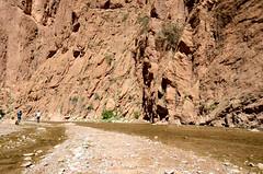 Gorge du Todrha nabij Tinghir, Marokko maart 2014 (wally nelemans) Tags: canyon morocco maroc gorge marokko 2014 kloof todrha gorgedutodrha