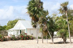 Ryan's Caymanian house (Simone Scott) Tags: islands cayman caymanislands brac caymanbrac caymanian traditionalhome silverthatchpalm simonescottcaymanbrac