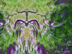 Spider dream (Camilla's photos! Thank you for viewing ) Tags: flowers abstract green art fountain norway digital photoshop fun spider fly spring jump wings energy colours bright mercury outdoor spirit expression joy dream manipulation olympus fantasy imagination ecstasy pouring escapeism