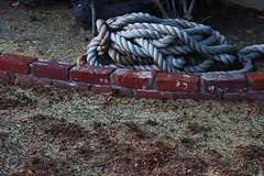 Old Rope (michaelelrod) Tags: california street old urban brick texture canon photography photo still picture pic rope dslr dslrphotography