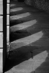 P-00399-No-094_rt (Steve Lippitt) Tags: cemeteries building london cemetery architecture landscape architecturaldetail unitedkingdom landscaping path transport structures graves architectural transportation colonnade burialground edifice edifices placeofworship colonnades westbromptoncemetery religiousbuilding geo:country=unitedkingdom geo:city=london exif:make=fujifilm camera:make=fujifilm geostate exif:aperture=45 exif:isospeed=200 camera:model=xt1 exif:model=xt1 exif:lens=xf50140mmf28rlmoiswr exif:focallength=804mm geo:location=westbromptoncemeteryfulhamroadsw109ug geo:lon=018903833333333 geo:lat=51484238333333