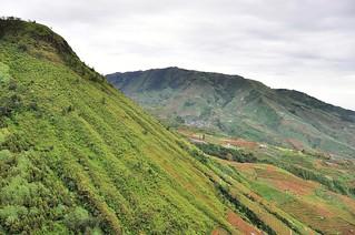 dieng plateau - java - indonesie 20