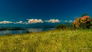 Ogosta dam