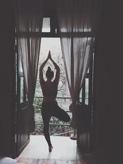 Ro (Kennel Fieldsetter) Tags: yoga tea meditation greentea mala