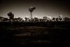Southern Cross sunset (erglis_m (Mick)) Tags: blackandwhite bw windmill contrast canon landscape ir blackwhite interesting nt canoneos20d infrared australianlandscape northernterritory infraredfilter theoutback centraldesert tanami duckponds tanamitrack tanamidesert lajamanu theaustralianoutback warlpiricountry warnayakaartcentre
