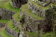 Tarasy Machu Picchu | Terraces of Machu Picchu