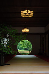 20160528-D7-DS7_3053.jpg (d3_plus) Tags: street sky plant flower building history nature japan temple nikon scenery shrine kamakura daily architectural telephoto bloom  tele streetphoto nikkor   tamron    shintoshrine  buddhisttemple dailyphoto sanctuary 28300mm   thesedays kitakamakura   28300     holyplace historicmonuments tamron28300mm  ancientcity   tamronaf28300mmf3563    a061  architecturalstructure telezoomlens d700  tamronaf28300mmf3563xrdildasphericalif nikond700   a061n