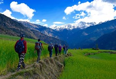 Trekking in the Upper Saryu valley (Matthew Stuttard) Tags: india trek himalaya uttarakhand