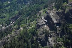 Shear (Vilhelm Tag) Tags: trees cliff mountain green scale nature pine landscape 50mm big altitude peaceful huge vast photohopexpress