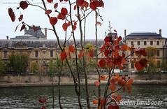 Paris (Stefan Lambauer) Tags: street city cidade paris france rio seine river walking europa louvre frana fr lilian sena riosena 2015 portdessaintspres stefanlambauer