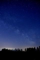 Star Filled Night (PullingDad) Tags: astrophotography stars night milky way trees silouette wisconsin nikon d7200 backyard beautiful blue