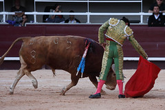 Diego_Urdiales_Istres190616_08 (Olivier Causse) Tags: toros torero istres urdiales