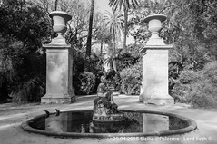 Palermo (Lord Seth) Tags: bw italy nikon palermo fontana sicilia biancoenero 2015 giardinobotanico d5000 lordseth