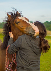 Eva cuddles (d.g.photos) Tags: horse pony welsh cob foal yearling