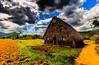 #Viñales #Vinales #Valley #Cuba #Landscape #photography #UNESCO Area and #Tabacco Farm #Cohiba #Kuba #CubaTravel www.CasaVinales.jimdo.com (Casa Particular Vinales) Tags: landscape photography cuba unesco valley vinales kuba tabacco cohiba viñales cubatravel
